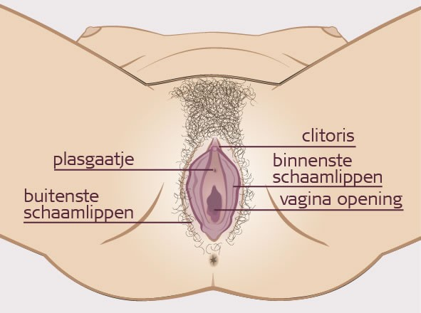 ww vagina nl sexplekken nederland